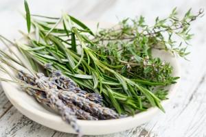 Lavanda piante aromatiche composizione